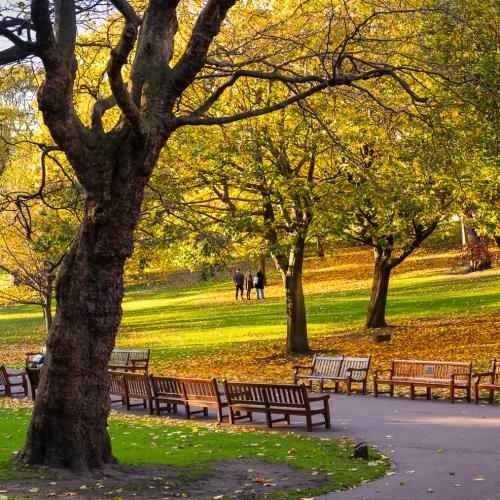 Princes Stret Gardens in autumn, Edinburgh, Scotland, Unitrd Kingdom.
