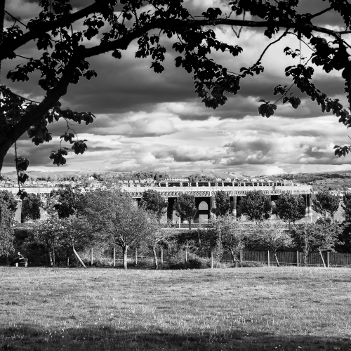 Monochrome image of the Tay Rail Bridge from Magdalen Green, Dundee, Scotland. DD049