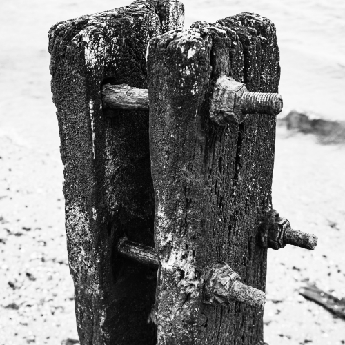 Monochrome (black and white) image of rotting groyne post on Broughty Ferry beach, Dundee, Scotland. DD072