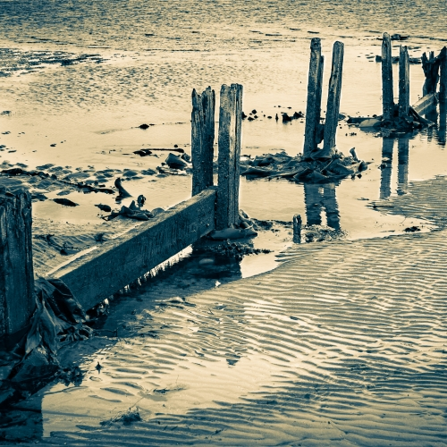 Duotone image of rotting wooden groyne on Broughty Ferry beach, Dundee, Scotland. DD073