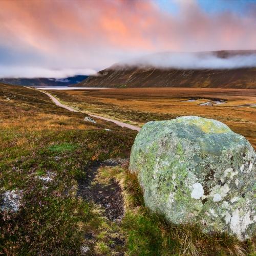 Dawn in Glen Muick, Cairngorms National Park, Scotland.