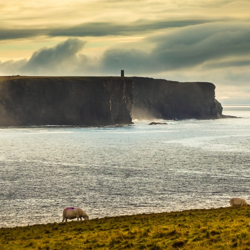 Marwick Head and the Kitchener Memorial, from the Brough of Birsay, Orkney Islands. OR012