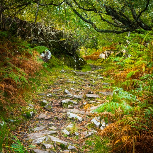 The ancient track from Ard Dubh to Ardban, Applecross, Scotland. AP022